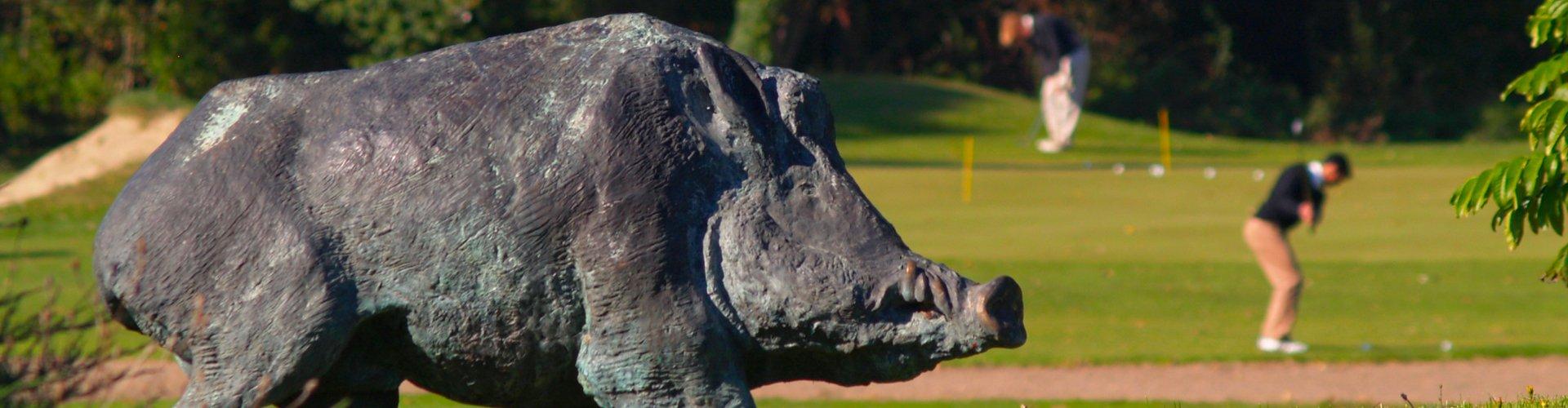 golf-club-lyon-ok.jpg